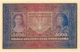 5 000 marek 1920